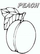 raskraski-frukty-persik-6