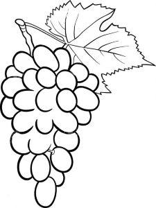 raskraski-frukty-vinograd-3