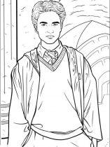 raskraski-iz-multikov-Harry-Potter-22
