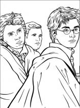 raskraski-iz-multikov-Harry-Potter-23