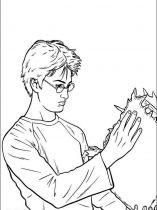 raskraski-iz-multikov-Harry-Potter-6