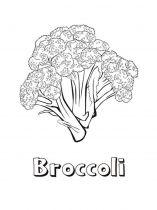 raskraski-brokkoli-3