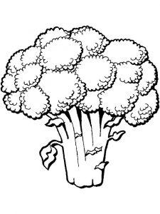 raskraski-brokkoli-9