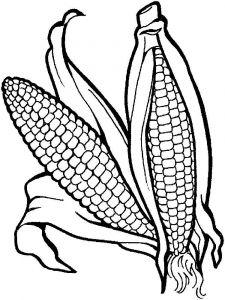 raskraski-kukuruza-5