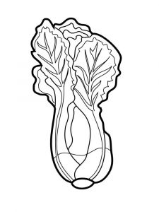 raskraski-salat-1